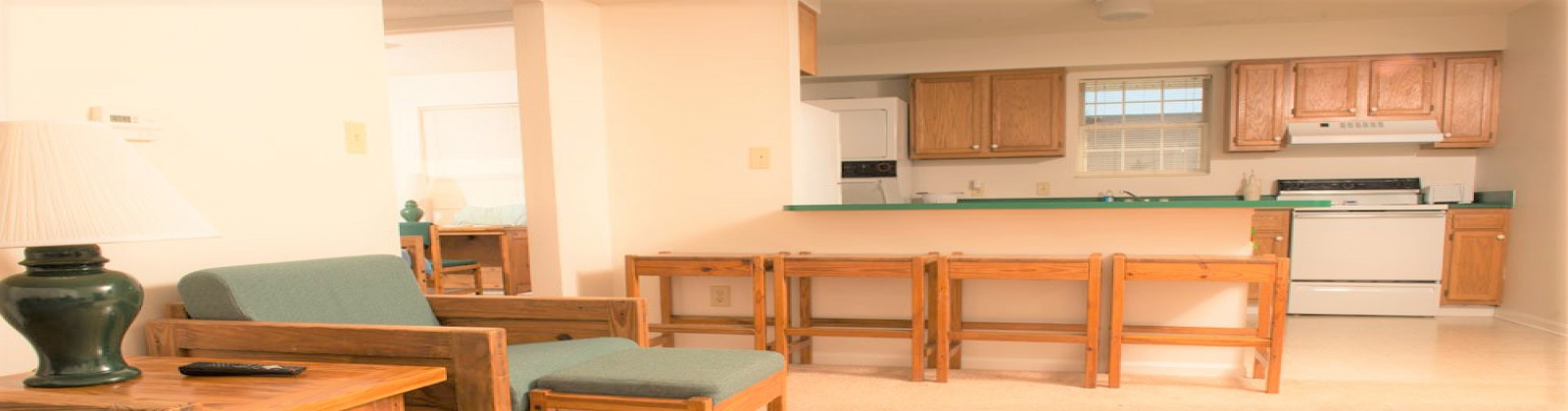 15 S Shafer Street APT 1902 Athens, Ohio, 4 Bedrooms Bedrooms, ,2 BathroomsBathrooms,Apartment,For Rent,Street APT 1902,1104